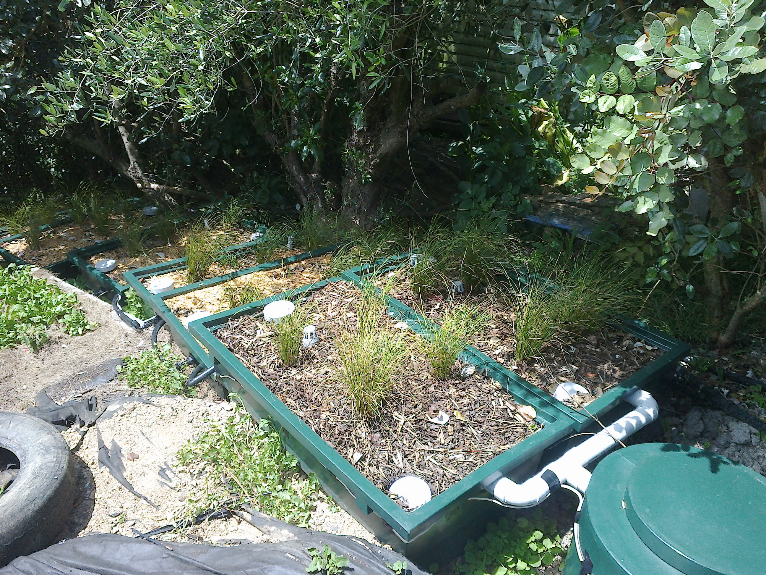 Simple Wastwater Solutions digestor and plant filters at Ivan Kitson's, Waiheke Island
